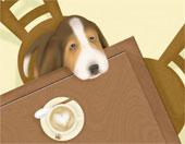 кофе для собак