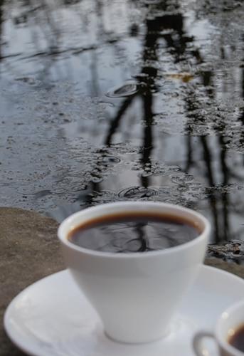 кофейный календарь / декабрь