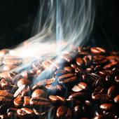 топливо из кофе