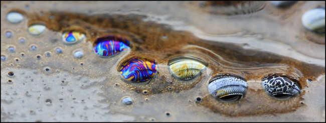 увеличенные пузырьки на кофейной пене