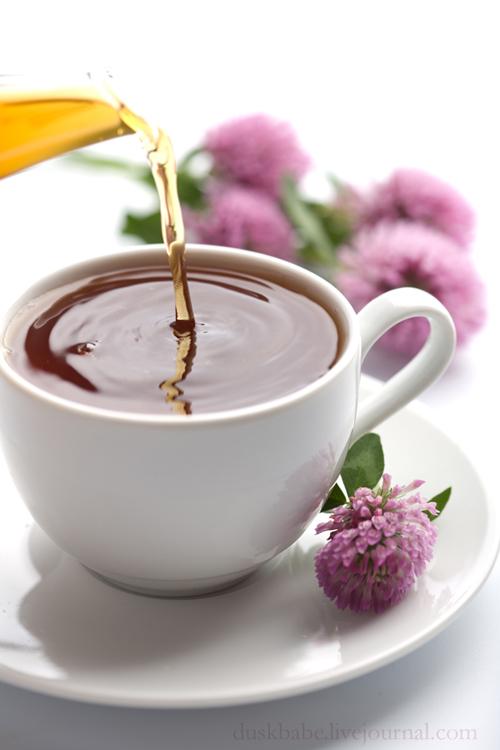 Чай с клевером